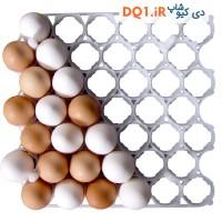 شانه 42 عددی تخم مرغ نطفه دار