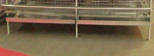 قفس بلدرچین استاندارد