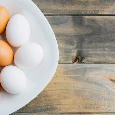 اجزا تشکیل دهنده تخم مرغ