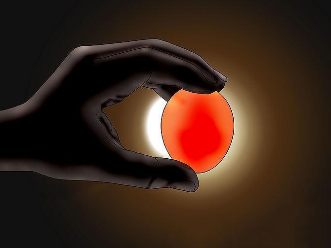 جوجه کشی از تخم غاز