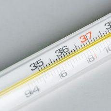 درجه حرارت جنین