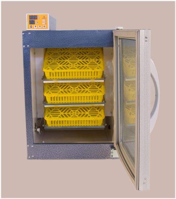 دستگاه جوجه کشی DQ1-40SH خانگی 126 عددی