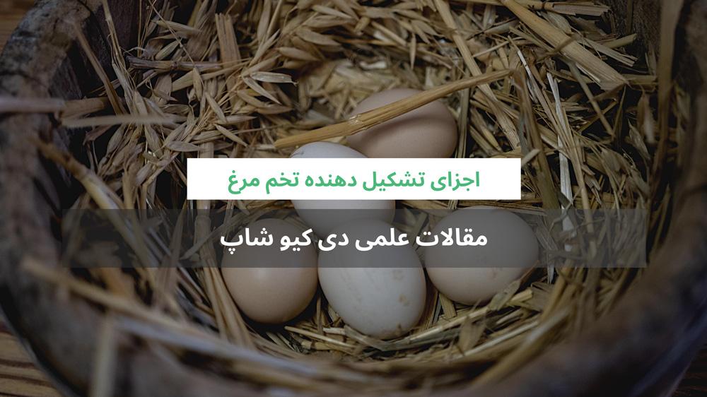 اجزای تشکیل دهنده تخم مرغ